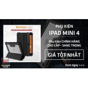 iPad Mini 4 (13)