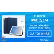 iPad 2/3/4 (1)
