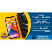 iPhone 12 Pro Max (35)