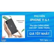 iPhone 11 (6.1) (51)